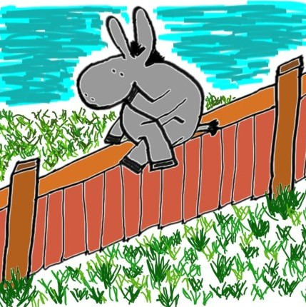 on-the-fence